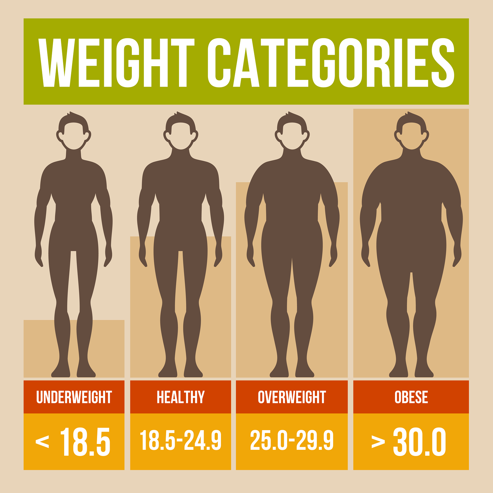 How To Calculate My Bmi And Body Fat Percentage Solution For How